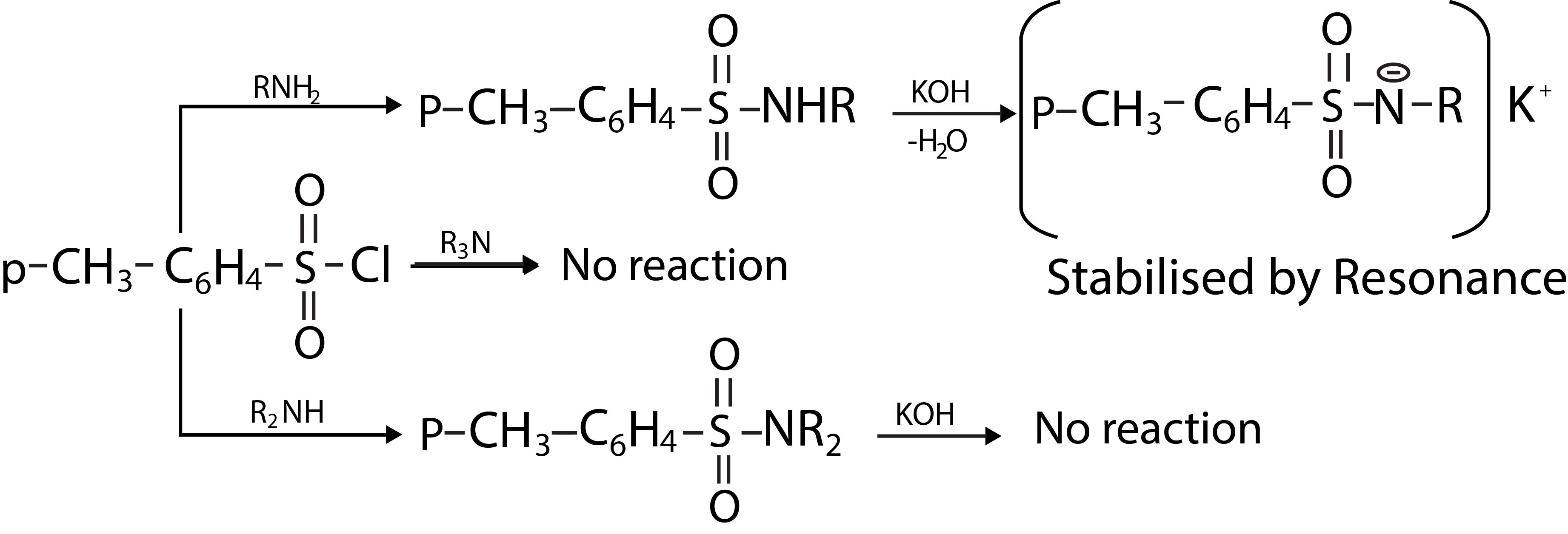 Chemistry CHEMICAL REACTIONS OF AMINES