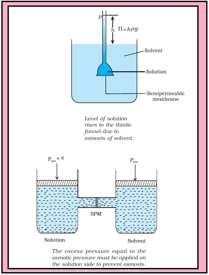 semipermeable membrane definition